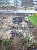 Quaker Gardens 020050216